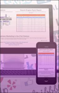 Screen shots of website management stats